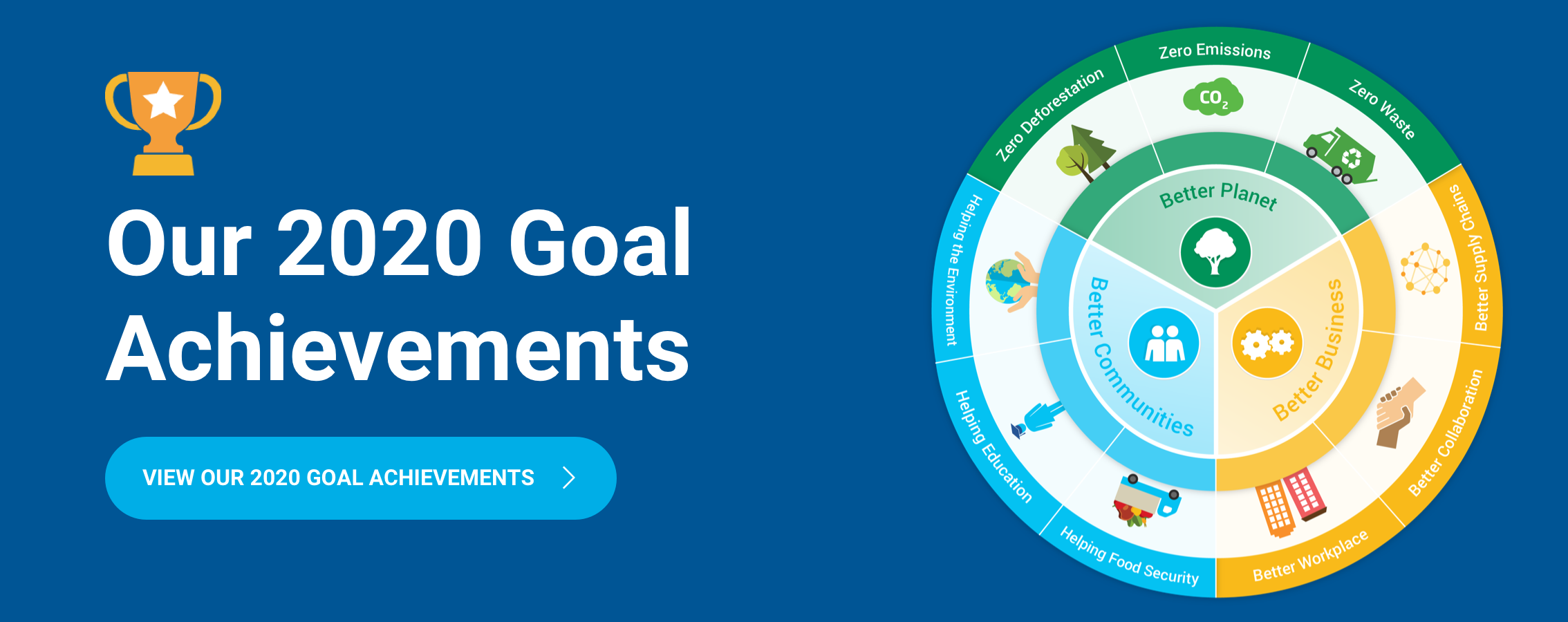 Goal Achievements